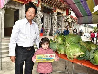 高雄阿蓮區高麗菜義賣 所得捐贈當地公廟