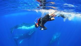《男人與他的海》試片掌聲不斷 黃嘉俊邀1萬學子體驗最美麗海洋電影