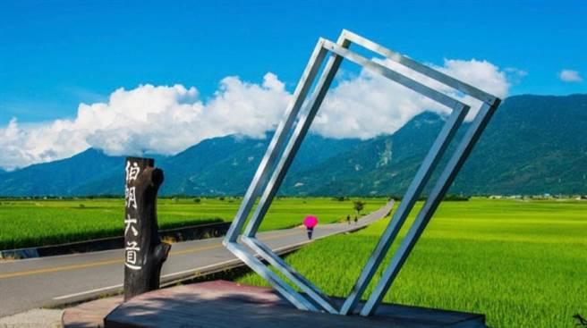 台東知名景點「伯朗大道」。(日暉國際渡假村提供)