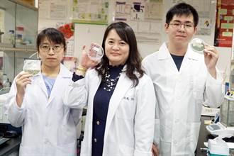 大葉大學藥保系 研發食用海藻的保健美粧附加價值
