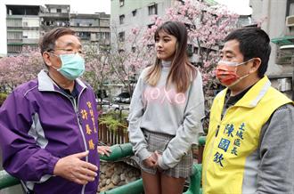 土城季節限定櫻花河 區公所攜手甜美藝人拍片推景點