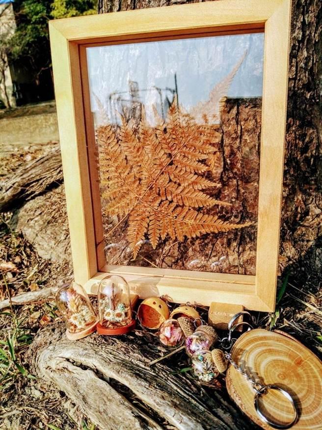 嘉大學生運用植物製作手作藝品。(嘉義大學提供)