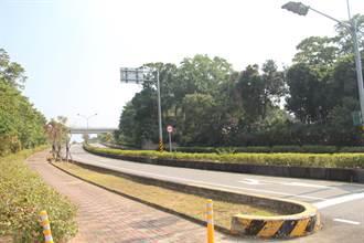 聯大路工程9日封路施工 導入生態保育策略護石虎