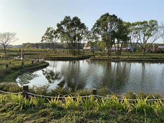 八甲茶園蓄水池解決缺水成公園景觀 發展茶園休憩景點