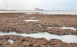 經長喊藻礁公投若過 增500萬噸燃煤發電!盧秀燕轟王美花失德失格 威脅中部人