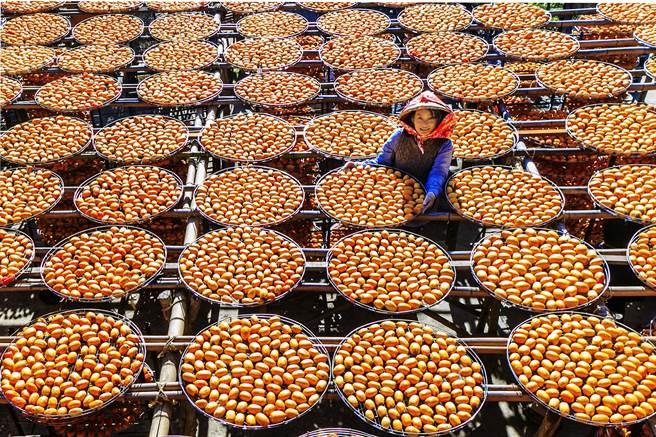 農委會公告畫設新埔大墩山休閒農業區,旱坑里是新埔知名的柿餅產地。(羅浚濱攝)