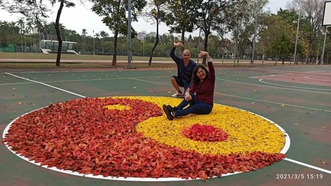 一位男子為了向老婆表明愛意,5日在國立嘉義大學的籃球場上利用黃色風鈴木以及木棉,排出醒目的「太極花」,夫妻兩人開心的與花海合影。(翻攝臉書社團《嘉義綠豆大小事》)