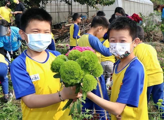 嘉義市育人國小發展「小花農」特色課程,日前歡喜慶幫收,小花農親手採下自己栽種的花卉,十分有成就感。(呂妍庭攝)