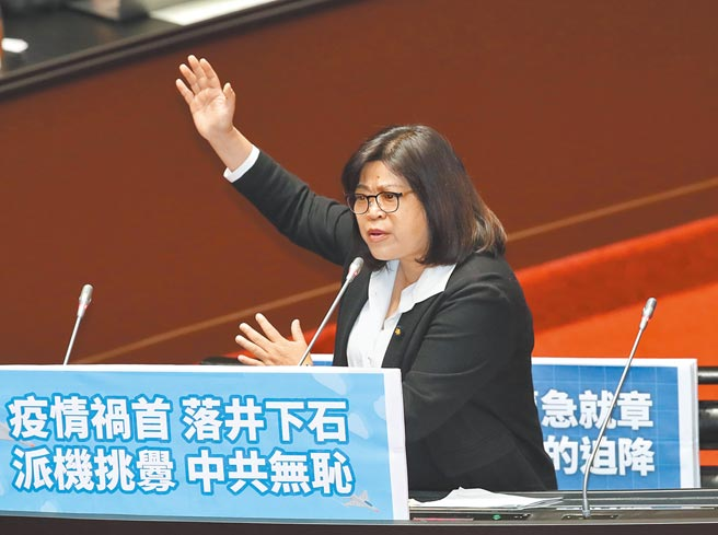 立委王美惠5日在立法院質詢。(鄭任南攝)