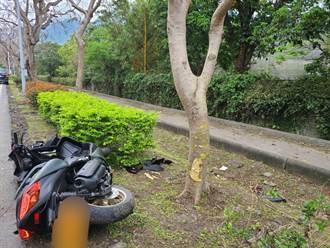 中橫公路死亡車禍 重機騎士自撞路樹臉部變形傷重不治