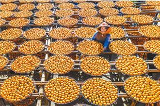 竹縣增2處休閒區 農業旅遊升級