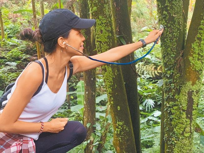 旅行社主打身心靈提升行程,吸引不少女性上門體驗、放空。(本質旅行提供/潘千詩台北傳真)
