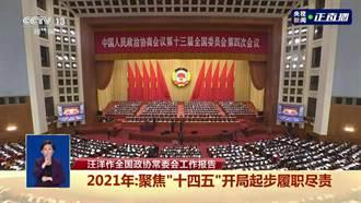 陸全國政協台籍委員建議:「台獨分子清單」範圍應該廣泛 可制訂《涉台國安法》