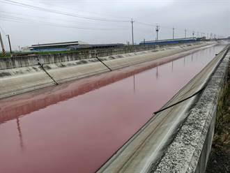 嘉義灌溉大排一片「紅通通」 居民憂遭汙染