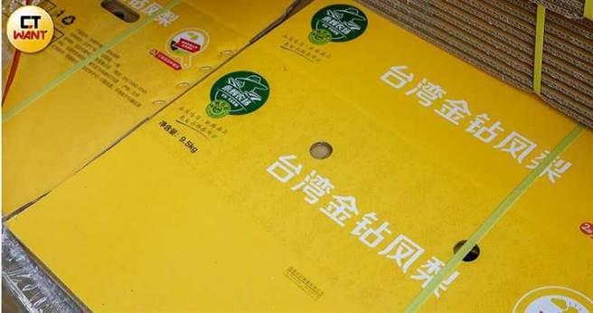 貿易商提供簡體字紙箱供果農包裝,如今無法出口大陸,只能自行吸收百萬元包裝損失。(圖/張文玠攝)