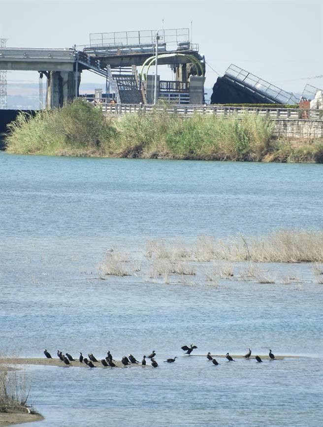 图为台中石冈坝水库的蓄水状况。(翻摄自脸书丝专我是东势人)
