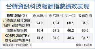 台韓資訊科技指數 奪目