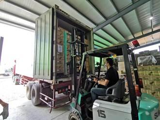 台鳳梨外銷受阻 旅外台人訂25公噸貨銷新加坡