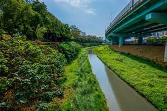淡水河水之呼吸 侯友宜提願景2030年達全數脫離嚴重汙染