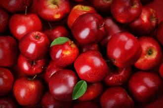华盛顿州苹果运不到台湾 美农产出口嘆无船