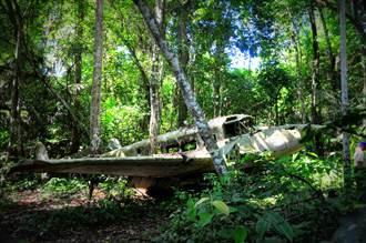 迫降雨林失蹤36天  機師躲過鱷魚、蟒蛇只吃1物奇蹟生還