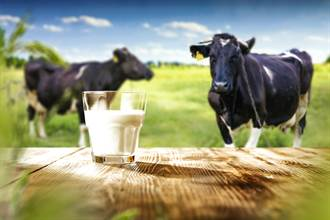 他問「喝牛奶是要乳牛一直懷孕」?知情人士爆驚人內幕