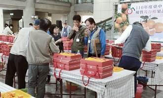 台中茂谷柑果品评鑑 石冈青农张正杰封王
