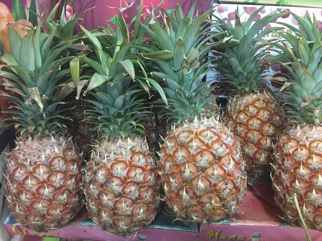 外界質疑鳳梨產區多為綠營執政,農委會大撒幣是為2022縣市首長選舉而綁樁,但農委會堅決否認。(李柏澔攝)