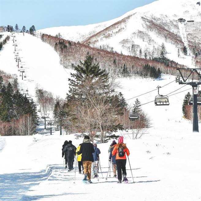 擁有粉雪的日本北海道是許多遊客心中的滑雪天堂。(Club Med提供)