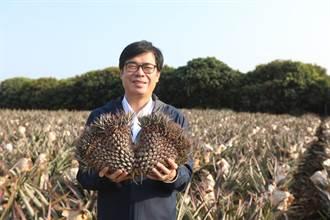 陳其邁民調創新高 比特王想起2個人 網:高雄人的智慧