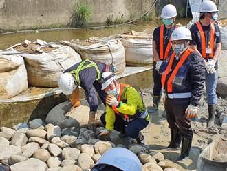 侯友宜體驗砌石 盼淨化全市19條河川水質