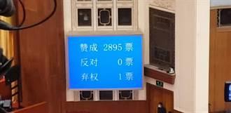 陸全國人大通過香港選舉制度草案 同意2895票、反對票0、棄權票1