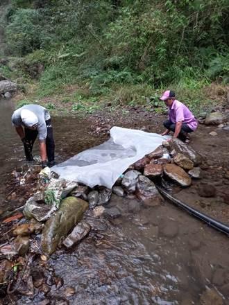 簡易自來水不穩定 泰安大興爭取自來水延管