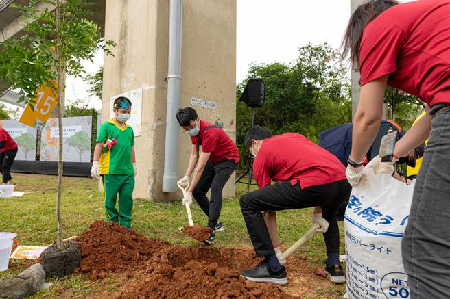 瑞原國小學童跟著資深樹藝師李佩蓉腳步,一步一步將樹苗種植在泥洞中。(黃婉婷攝)