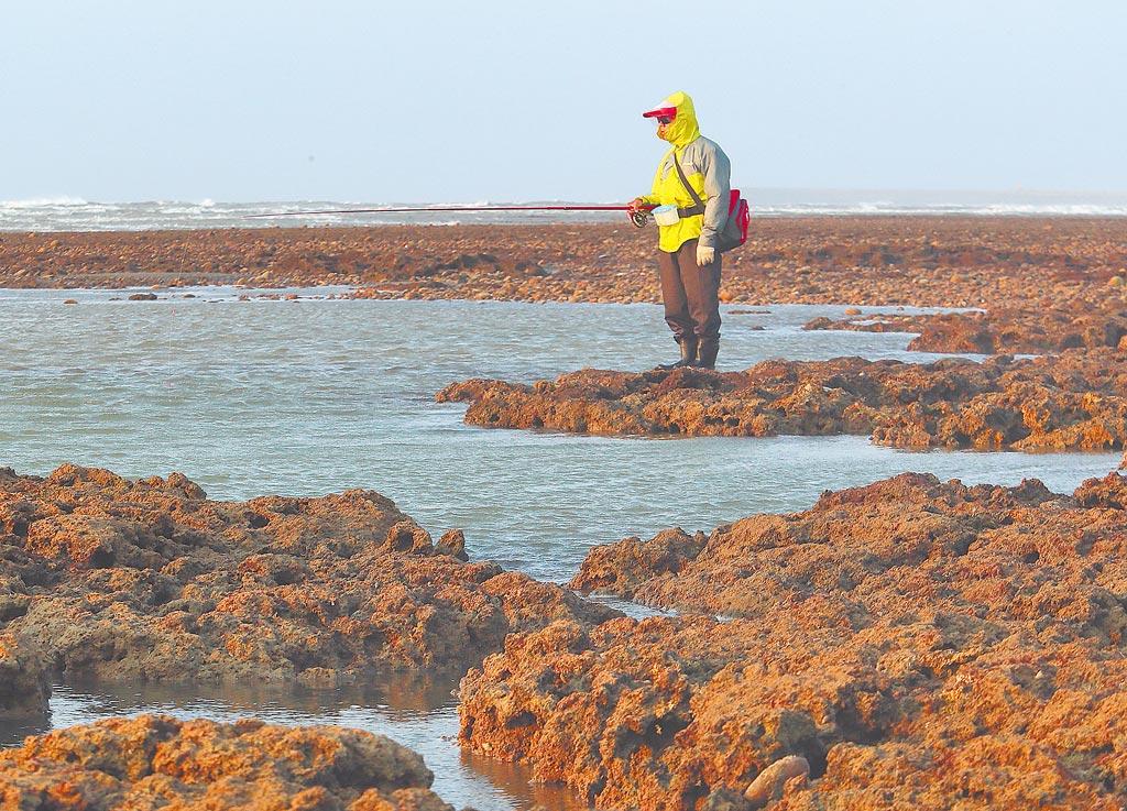 藻礁公投8月闖關,政院應提前做好政策被翻盤準備,不是只想恐嚇人民,在燃煤、藻礁二選一。圖為民眾在觀新藻礁生態保護區垂釣。(本報資料照片)