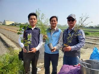 台灣原生樹種最好 雲林植樹節送6種花木