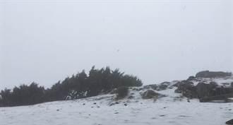 玉山再飄三月雪 合歡山下冰雹