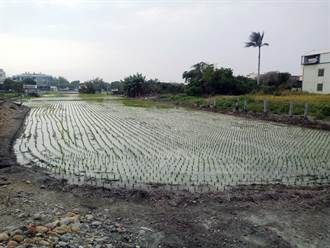 春耕尾聲 農水署彰化管理處加強灌溉水機動調度