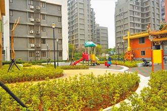 林口湖南公園改造 打造阿勃勒黃金樹廊