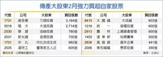 傳產大股東2月狂買自家股
