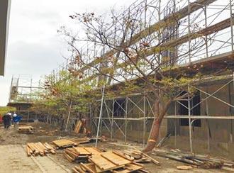 竹北成功國中新校舍 8月完工