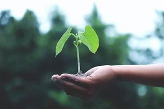 【新聞多益】環保從日常做起,學會看環境友善標籤英文