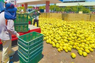 農發基金收購農產 3億淪堆肥