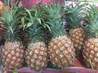金鑽少種些 農糧署近期輔導農民轉作芒果鳳梨