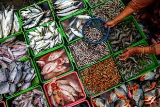 海鮮騙很大 餐廳2種魚最常標錯 蝦球竟沒蝦