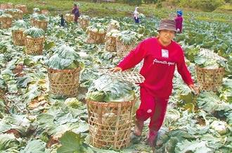 農委會撒幣去化 藍籲監院糾彈失職