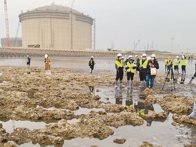21位立委昨赴大潭藻礁區視察,並邀集各部會、台電、中油等與環團對話,現場炮聲隆隆;立委隨後實地勘查藻礁復育是否受工程影響。(姜霏攝)