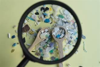 塑胶微粒恐渗入淋巴循环或大脑 茶包、食盐竟都有