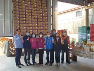 縣府爭取訂單 今年雲林鳳梨裝滿40呎貨櫃外銷香港