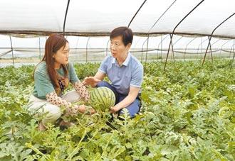 陸委會:加強赴大陸農業投資審查